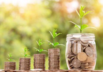 Pago de dividendos a accionistas